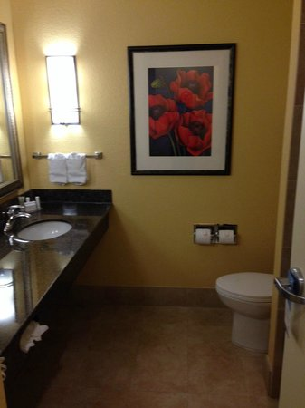 Fairfield Inn & Suites Houston Intercontinental Airport: The throne room