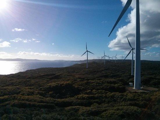 Emu Point Motel & Apartments : Albany wind farm