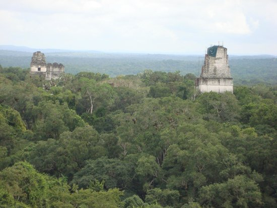Gran Plaza: View from Temple IV