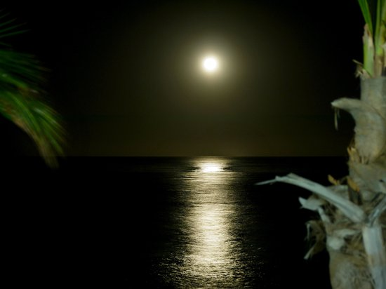 Spa Cielo: Moon rise over the ocean at a near by cafe