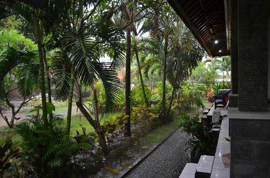 Balitis Home Stay: Raining