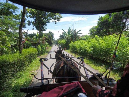 Rumah Dharma: Fetching us at Manohara Hotel by horse cart