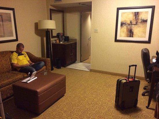 Embassy Suites by Hilton Atlanta - Galleria: Living room