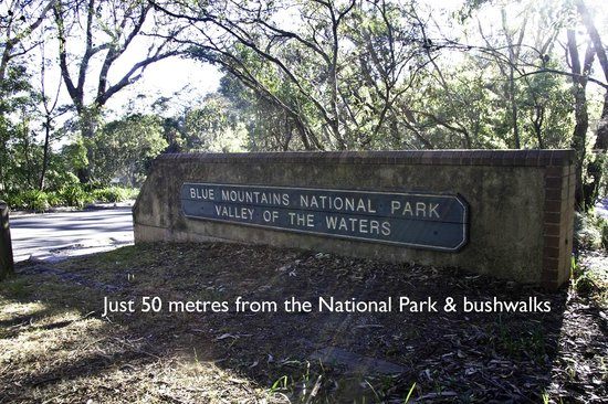 Wentworth Falls, Avustralya: Near Walking Tracks