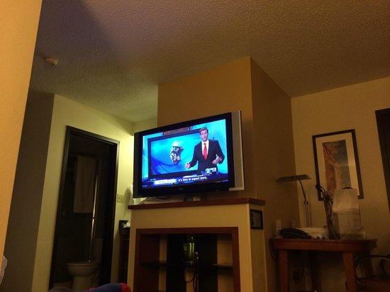 nice 42 inch tv picture of hyatt place nashville. Black Bedroom Furniture Sets. Home Design Ideas
