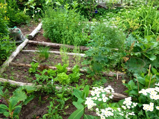 WhistleWood Farm Bed and Breakfast: The herb garden