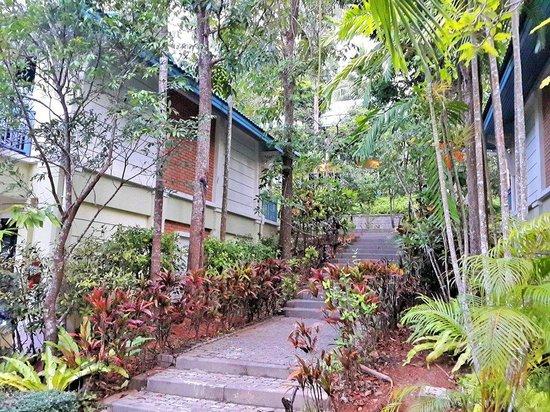 Krabi Tipa Resort: Лестница в домики