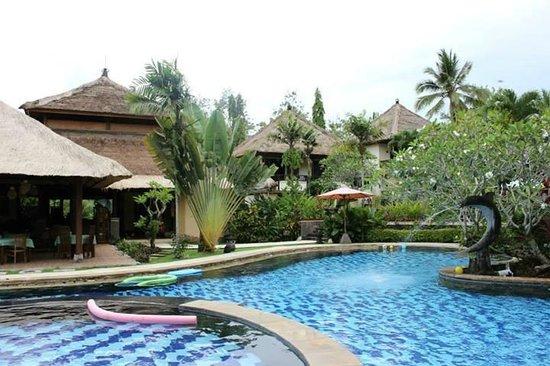 Medewi Bay Retreat: The pool