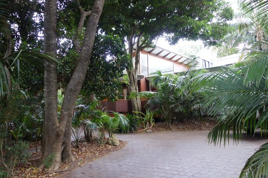 Arajilla Retreat - Lord Howe Island : The path to the dining and reception area