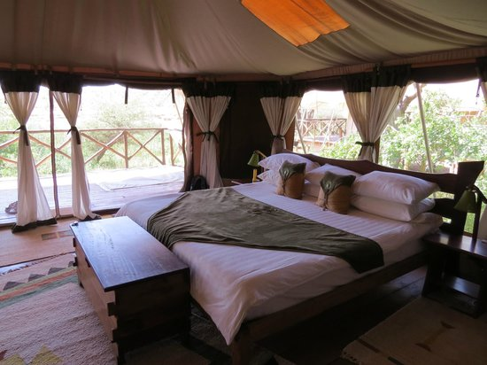 Daily Visitors Picture Of Elephant Bedroom Camp Samburu National Reserve Tripadvisor