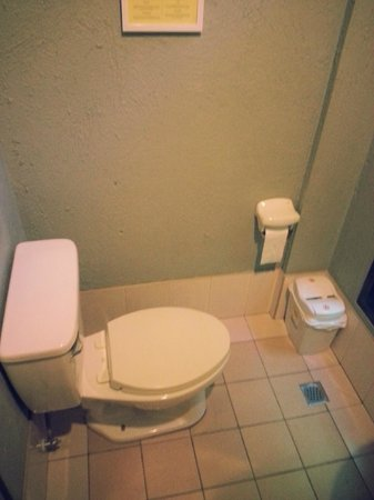 Purple Fountain  Inn: Toilet