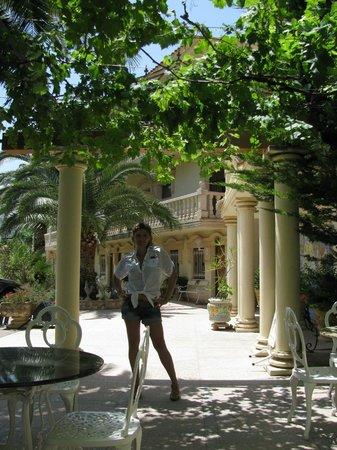 Hotel Rosa : У входа в отель
