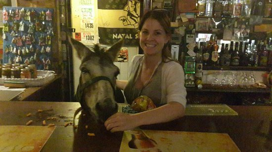 Green Lantern Inn: Bojangles the Donkey that frequents the pub