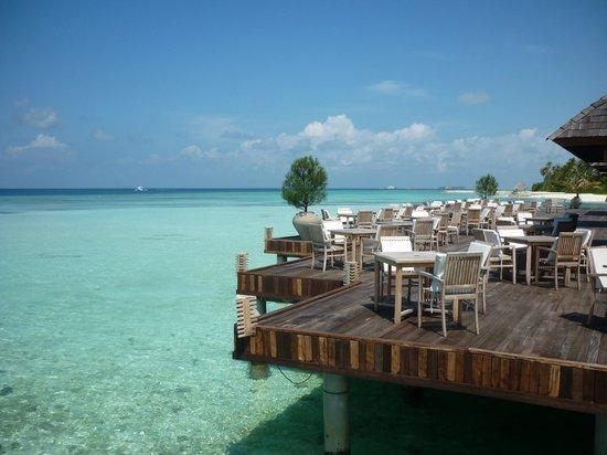 Olhuveli Beach & Spa Maldives: terrazza del ristorante