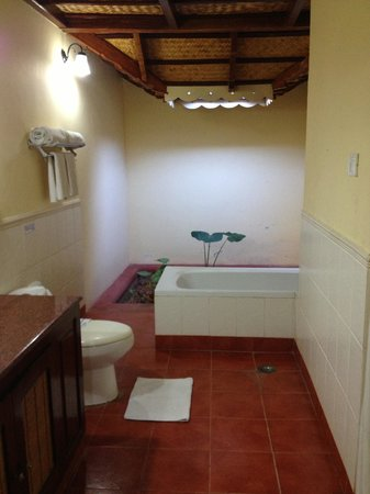 Indus Valley Ayurvedic Centre: Bathroom