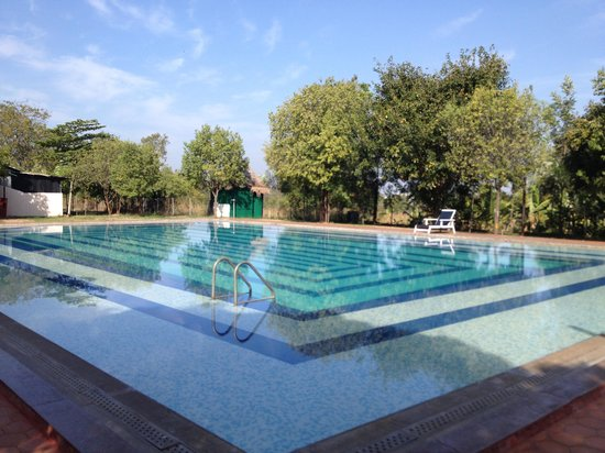 Indus Valley Ayurvedic Centre: Swimming pool