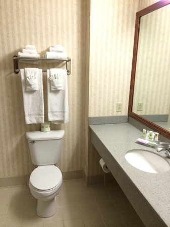 Delta Hotels by Marriott London Armouries: Clean bathroom