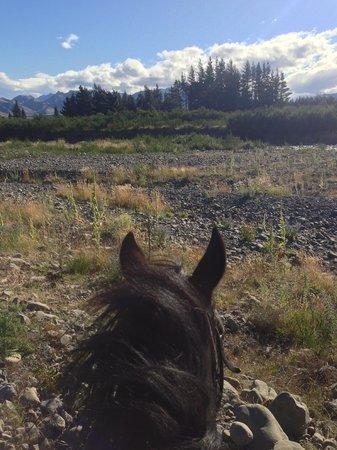 Wai ariki Farm Park, Cafe & Gallery: Beginner Horse Trek