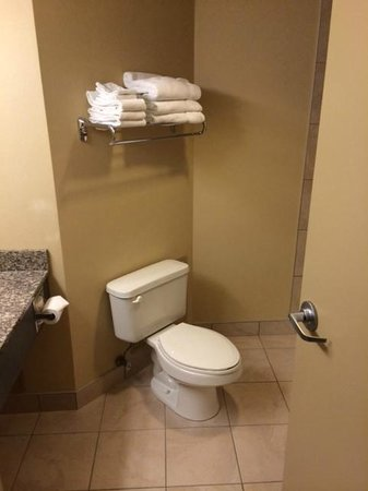 Holiday Inn Sarnia Hotel & Conf Center: Clean bathroom