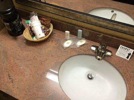 Comfort Inn Metro Airport: Bathroom