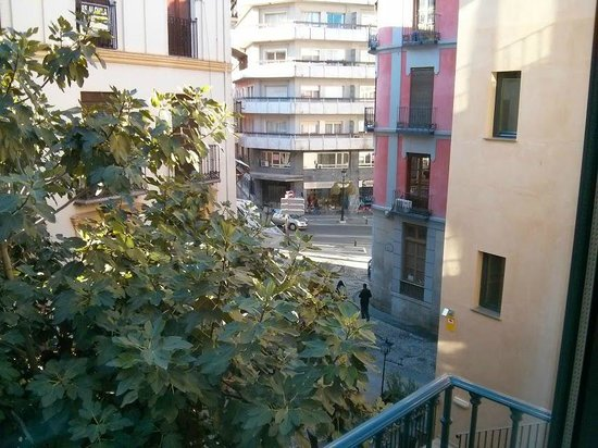 Hotel Monjas del Carmen: Vista