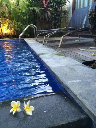 The Dipan Resort Petitenget: プール2