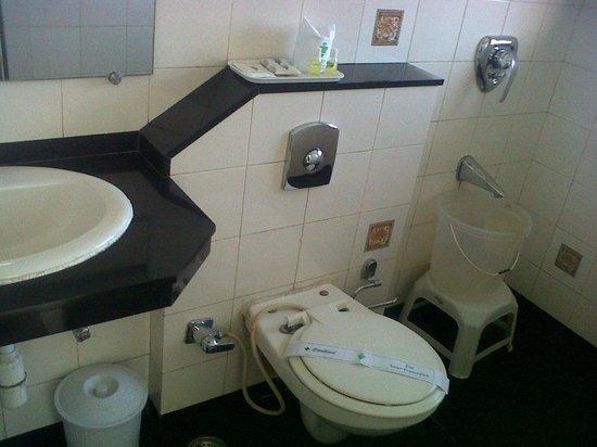 Valley View Resort: washroom