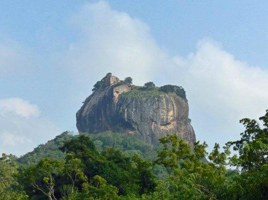 Sigiriya Village Hotel : Sigiriya rock from the hotel