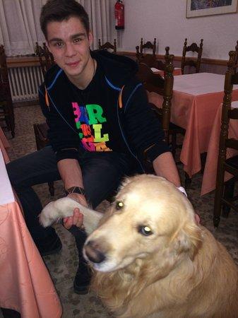 Montecarlo Hotel: Добрая хозяйская собака и мой сын