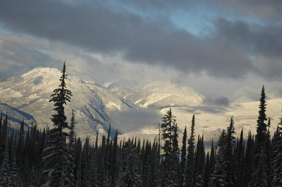 Revelstoke Bed and Breakfast: The View
