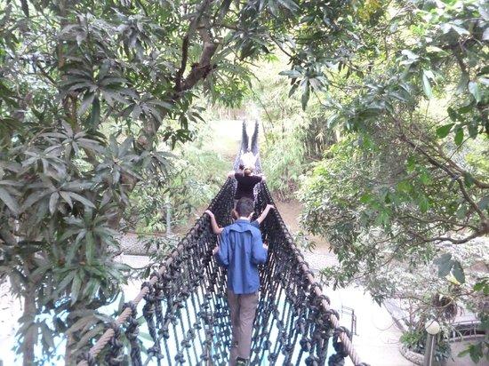 Rizal Re-Creation Center: Suspension bridge.