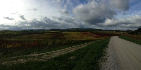 Relais Villa Grazianella - Fattoria del Cerro: Panorama da una strada iterna adiacente al Relais