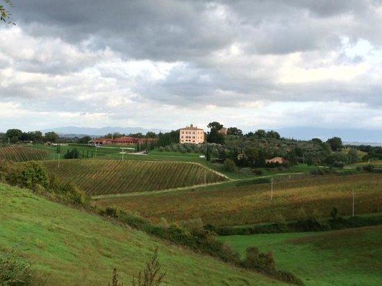 Relais Villa Grazianella - Fattoria del Cerro : Relais Villa Grazianella