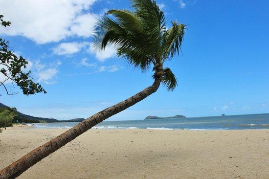 Kewarra Beach Resort & Spa : The stunning beach