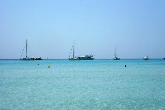 Playa de Es Trenc: Playa Es Trenc