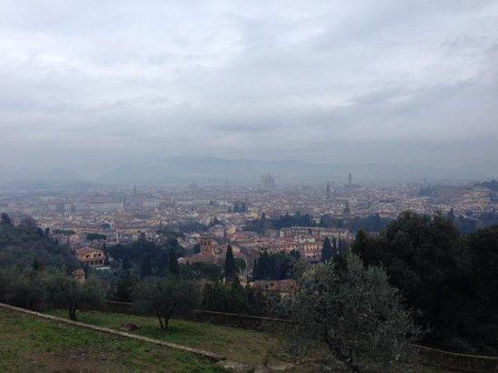Torre Di Bellosguardo : view