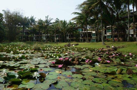 Club Med Bintan Island: view
