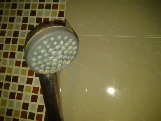 Aspery Hotel : Shower head never been cleaned.