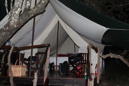 Schotia Safaris Private Game Reserve Bush tent - king size bed & Bush tent - king size bed - Picture of Schotia Safaris Private ...