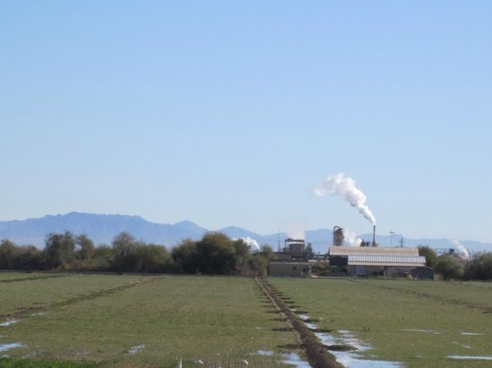 Sonny Bono National Wildlife Reserve: smelly air the area abounds with factories which are geothermal plants