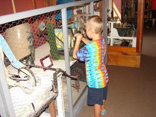 Huron County Museum: Interactive display