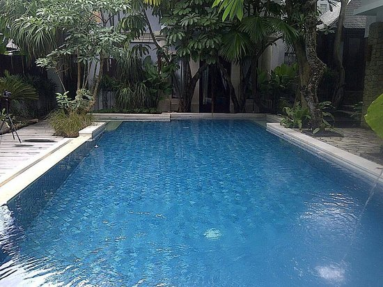 d'Sriwing Villa Gallery: The swimming pool in the center
