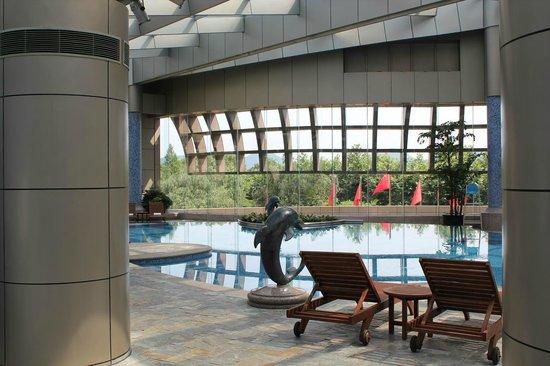 Hyatt Regency Hangzhou: ホテル内の室内プール