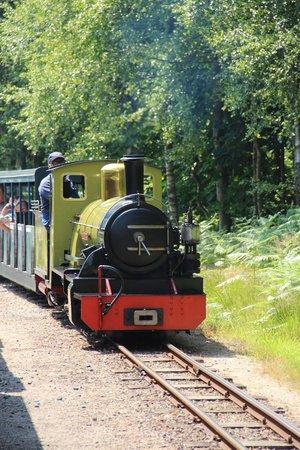 Ravenglass and Eskdale Railway: Northern Rock