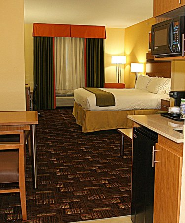 Holiday Inn Express & Suites Fort Lauderdale Airport South: King Suite