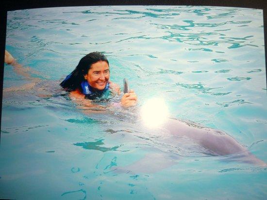 Delphinus Xcaret: Xtay me llevaba nadando,agarrada de su aleta dorsal,divino!
