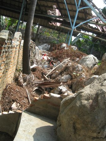 Samutprakan Crocodile Farm and Zoo : trash in the exhibit