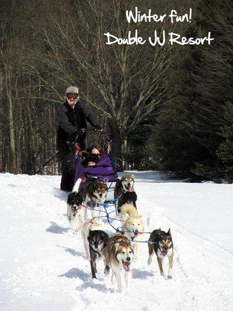 Double JJ Resort: Dog Sledding!