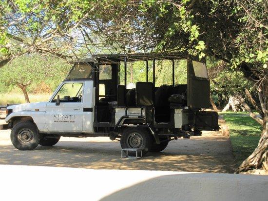 NYATI Safari Lodge: Safari