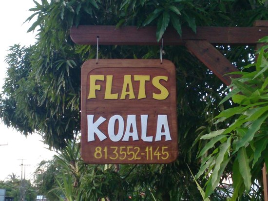 Flats Koala: Insegna tipica